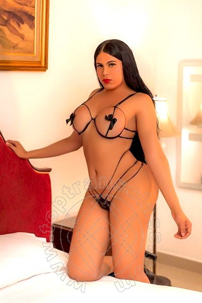 Trans Padova Miss Violeta